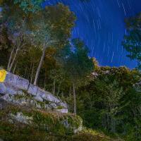 Canari la nuit, photo Renaud Gagnon