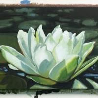 Lotus 2 détail