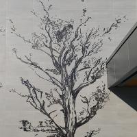 Graphisme arbre côté terrasse
