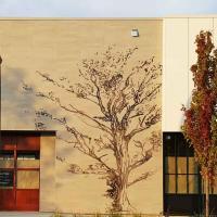 Graphisme arbre côté entrée principale